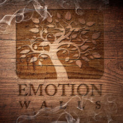 EMOTION WALLS